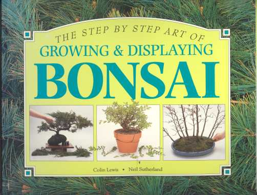 Image for THE STEP BY STEP ART OF GROWING & DISPLAYING BONSAI;