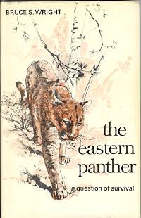 THE EASTERN PANTHER; a Question of Survival